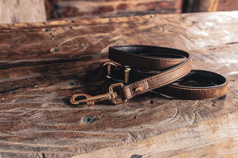 Premium natural leather dog leashes