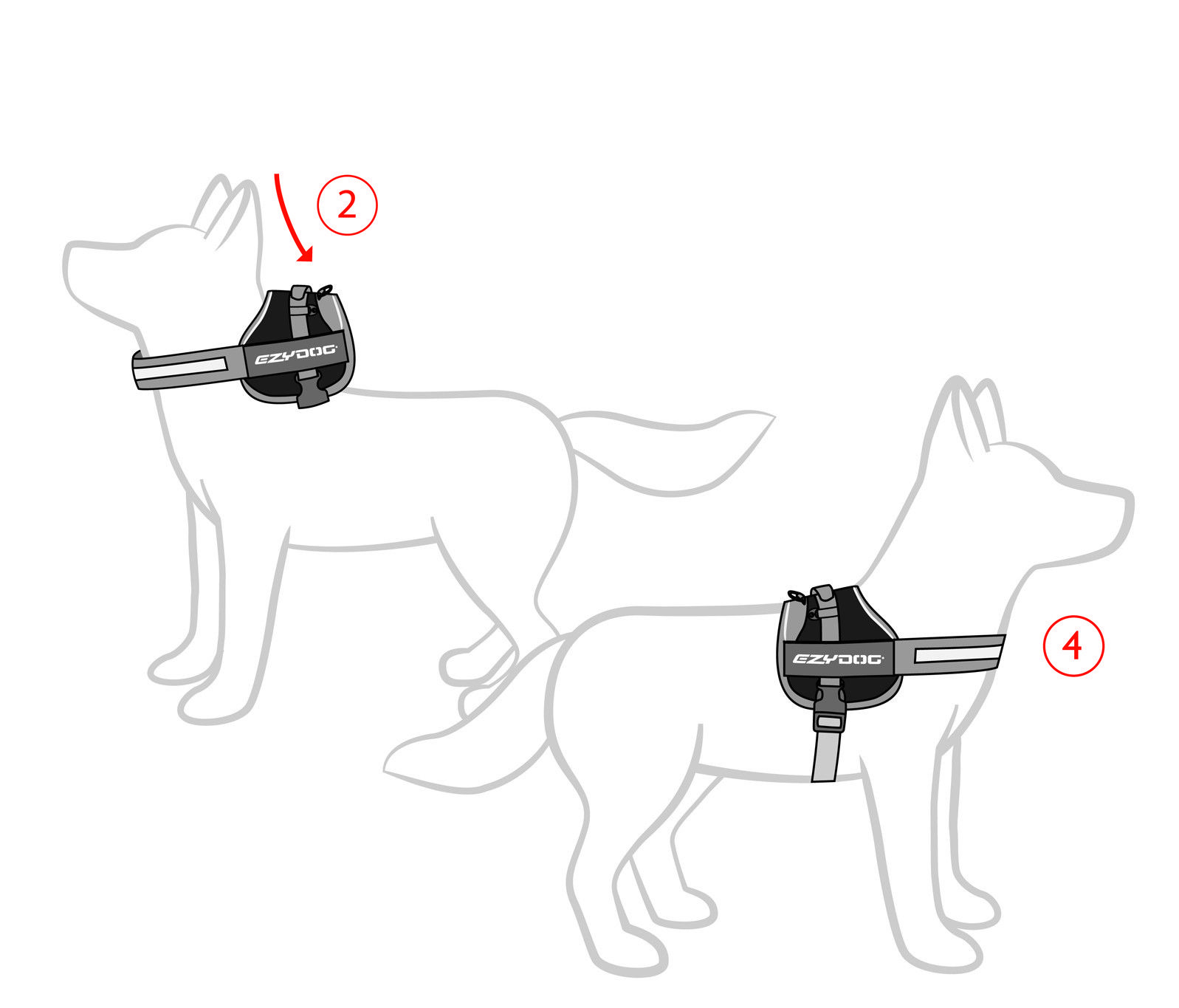 How to fit Convert Harness