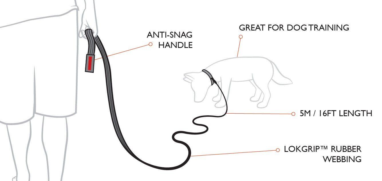training leash features